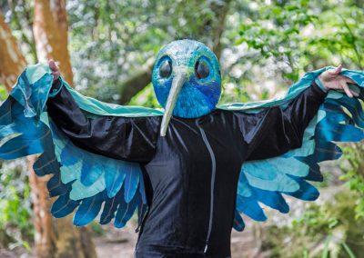 2017 colibri